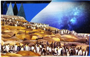 Collage_PenguinNight
